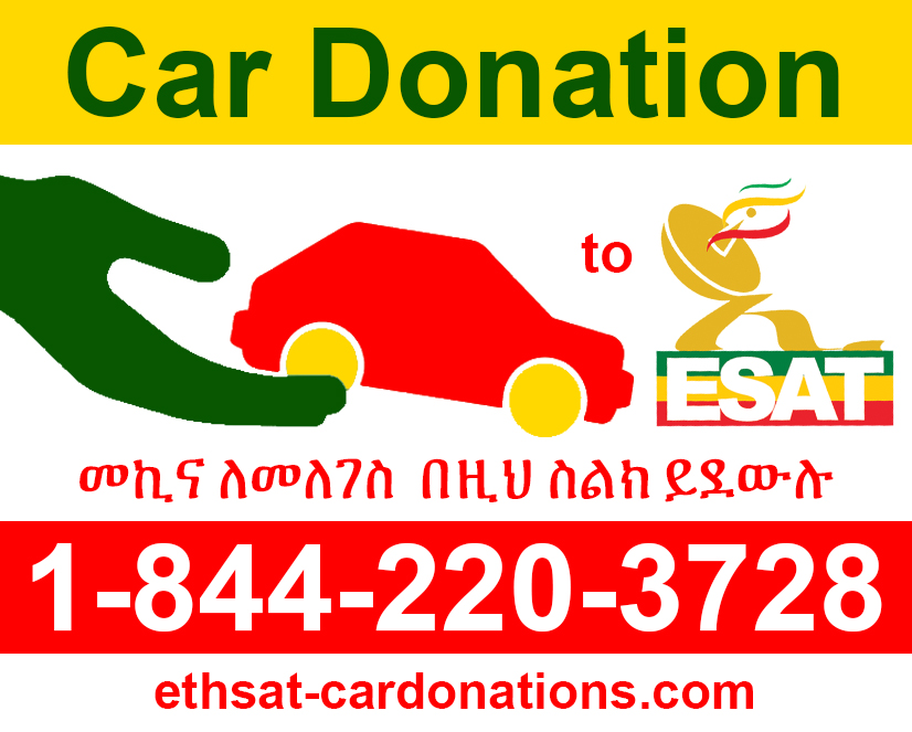 Support Ethiopian Satellite Television Radio Esat